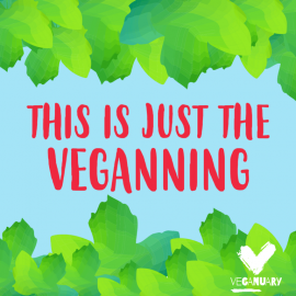 Top Tips On Going Vegan for Veganuary